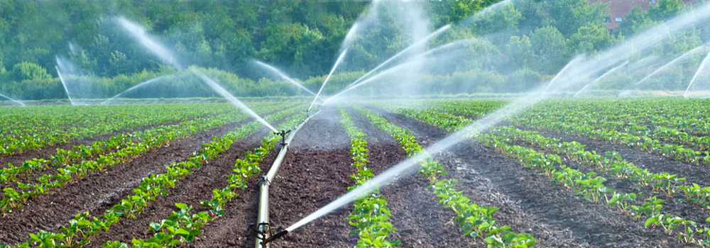 Water_Irrigation
